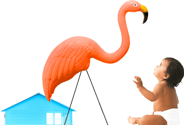 flamingo with baby and house